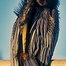 Anhinga Pruning in Morning Sun by TJ Baccari Photography
