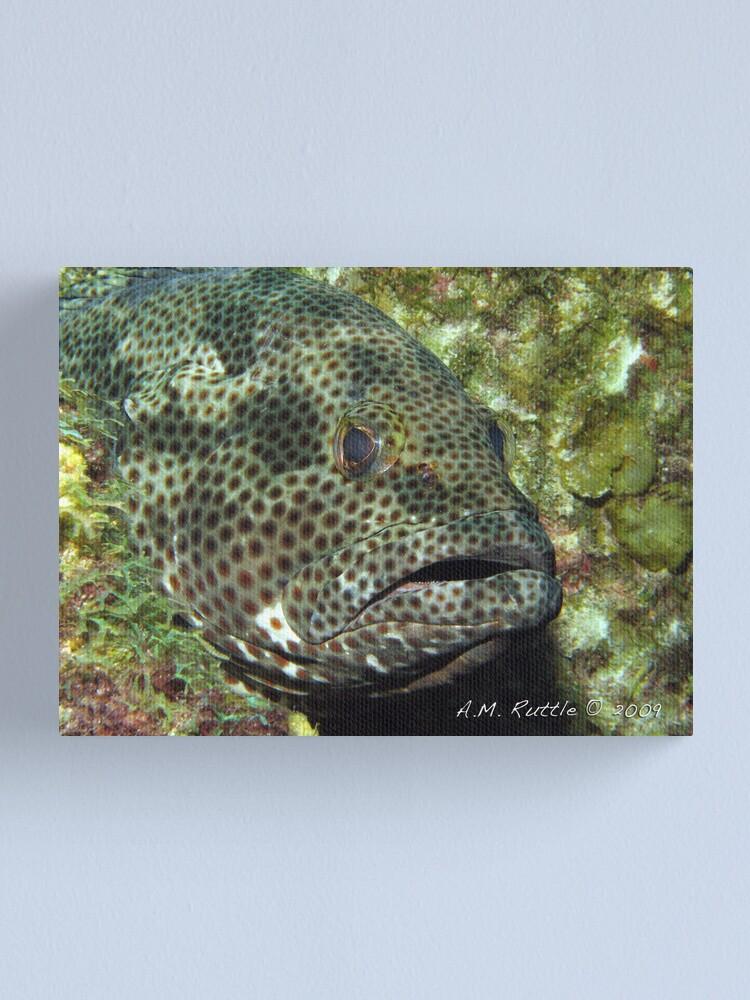Alternate view of Fish Sleep? Canvas Print
