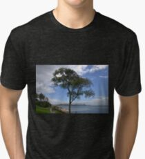 One Tree Stands Alone......... Tri-blend T-Shirt