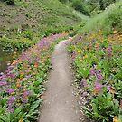 Purple Orange Pathway by CreativeEm