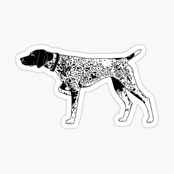 German Shorthaired Pointer 2 Sticker