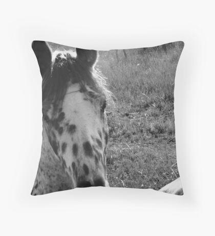 neighborhood horses #7 Throw Pillow