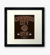 Cianwood City Gym Framed Print
