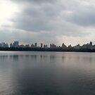 Central Park Skyline  by clarebearhh
