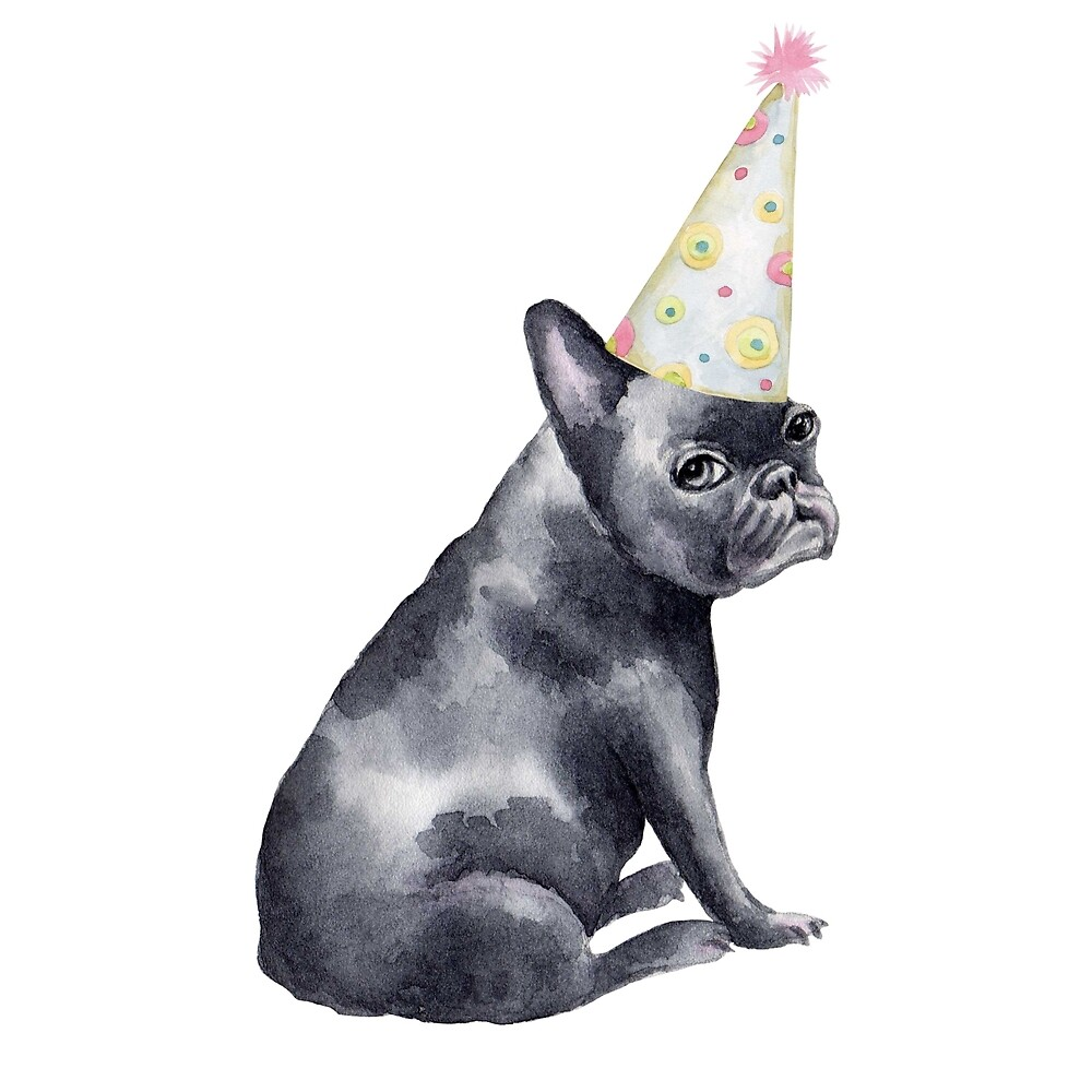 Cute French Bulldog With Party Hat By Destruction Bay Redbubble