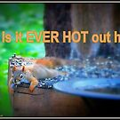 OY! Is it EVER HOT out here!  by Deb  Badt-Covell