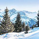 Peaceful Alpine Walk by BreezePics