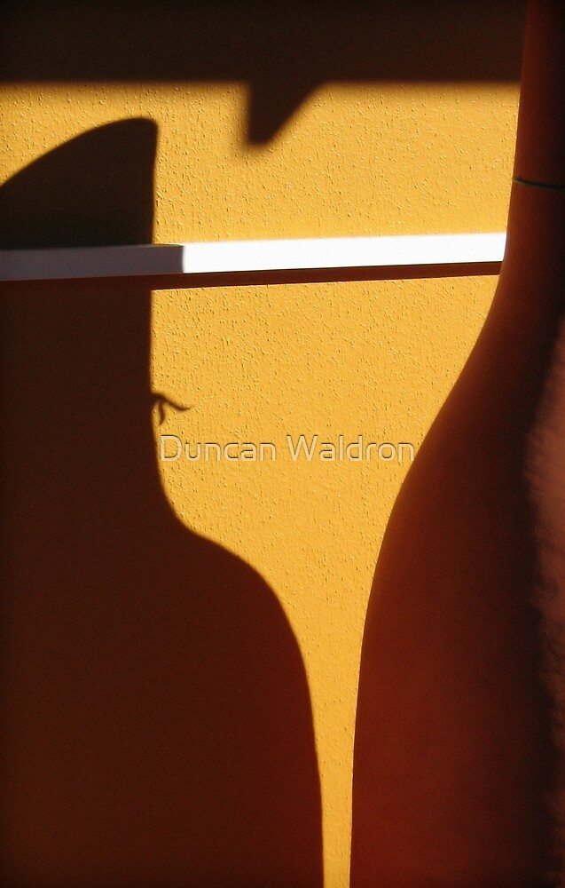 Pot and shadow by Duncan Waldron