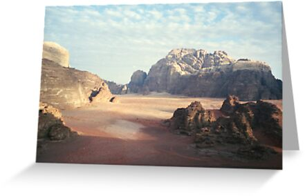 Pink Desert by Carmel Harty