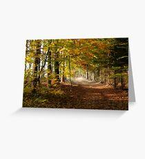 Path through autumn forest Greeting Card