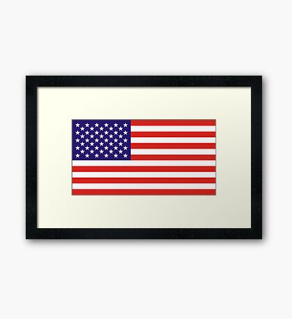 USA, national id Framed Print
