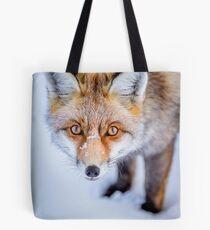 Bolsa de tela Curioso Fox
