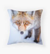 Curious Fox Floor Pillow