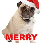 Merry Pugmas Christmas Xmas Funny Pug with Santa Hat by funnysayingstee