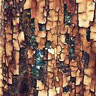 Burned Peeling Paint Texture by Joseph Skompski