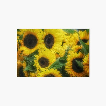 we're all golden sunflowers inside Art Board Print