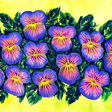 Pansies by WaterGardens