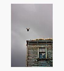 Liverpool 27 Photographic Print