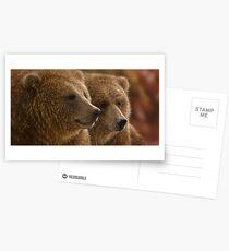 "Brown Bears ""Lazy Daze"" Postcards"