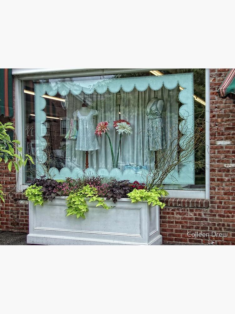 Salisbury Shop by colgdrew