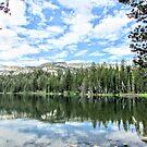 Eastern Sierra by marilyn diaz