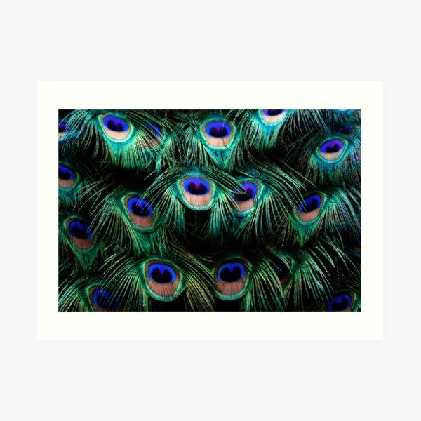 Glowing Eyes Art Print