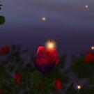 Summer Nightlights by Hannah Joy Patterson