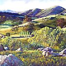 The Trawool Valley by Lynda Robinson