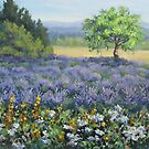 Lavender and Wildflowers by Karen Ilari