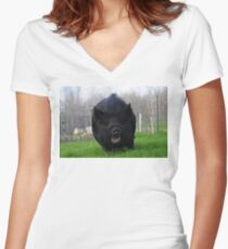 Green grass around me... Women's Fitted V-Neck T-Shirt