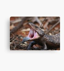Say ahhhh..... Canvas Print