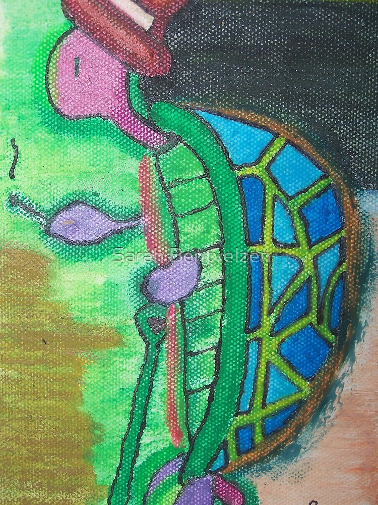 Mr. Turtle Goes to Washington by Sarah Bentvelzen