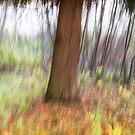 Trees - 27 - Impressions by Yannik Hay