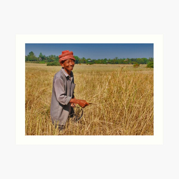 Rice Farmer Art Print