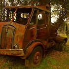 Rusty Trusty by Michael Matthews