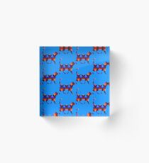 Blue and red spiral cat2 Acrylic Block