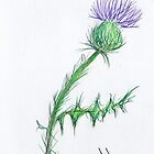 Thistle Sketch by AndiPi