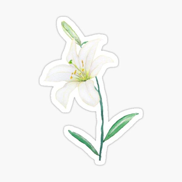 white lily watercolor  Sticker