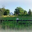 Scene of a Country Morning by Bine