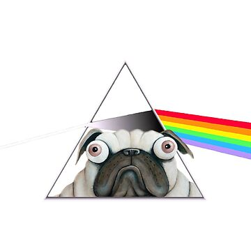 Pink Floyd Pug by thedeo