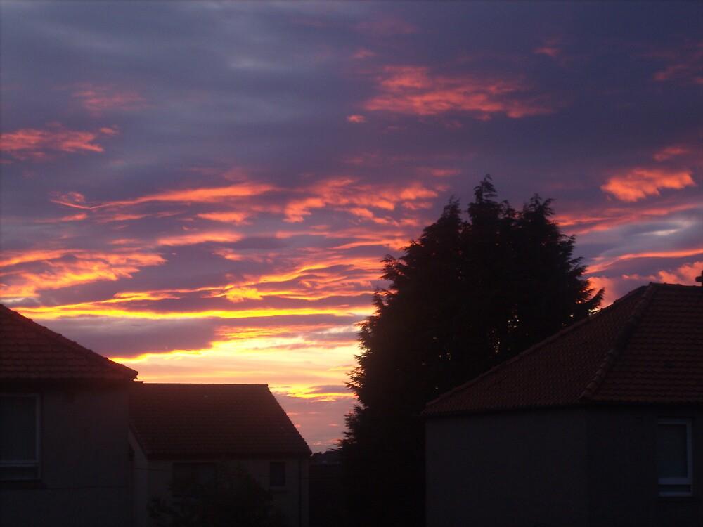 magenta skies by gemma angus