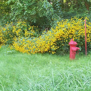 Fire Hydrant and Flowers by ladymalchav