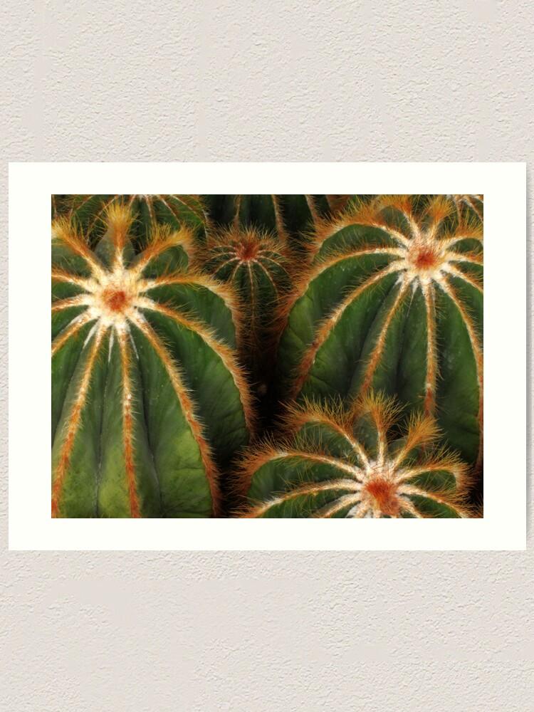 Alternate view of Cacti Art Print