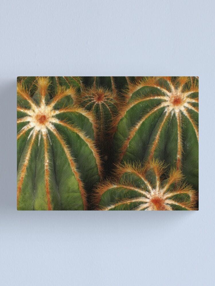 Alternate view of Cacti Canvas Print