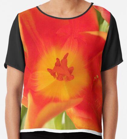 ein bunter Blütentraum, Tulpen, Tulpe Chiffontop