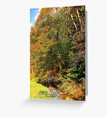 stream in color ll Greeting Card