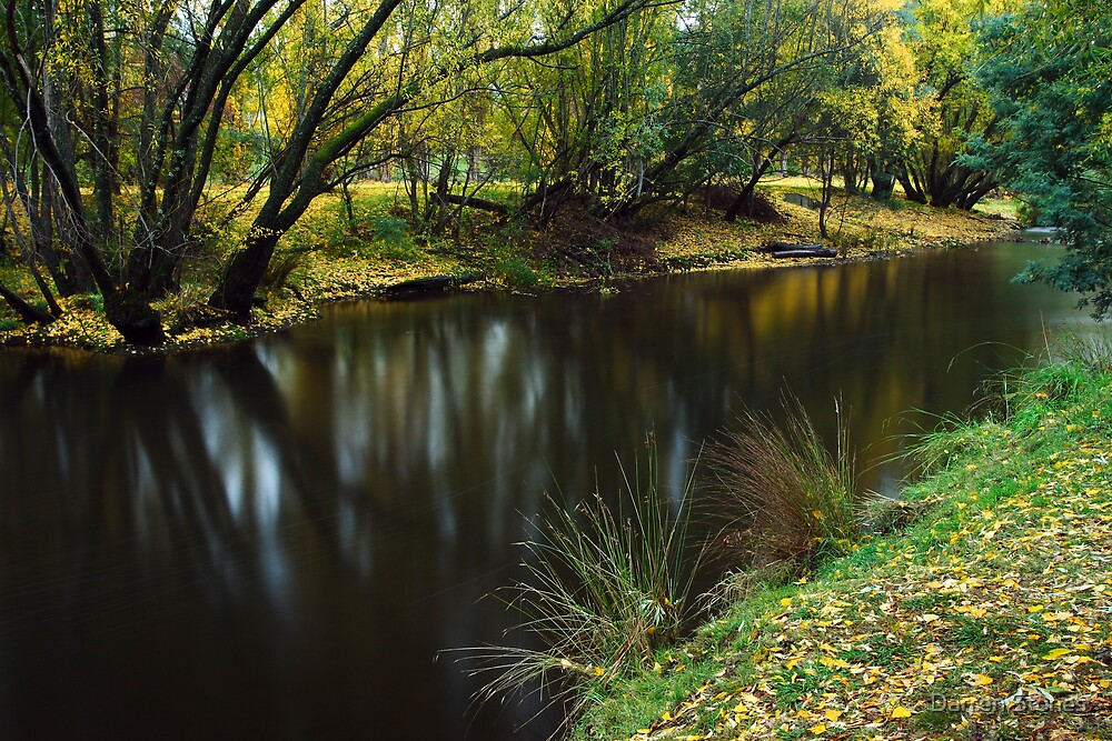 Ovens River at Bright by Darren Stones