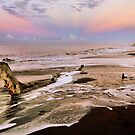 Sunrise on Driftwood Beach by Philip James Filia