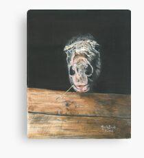 AJA/Oil on canvas Canvas Print