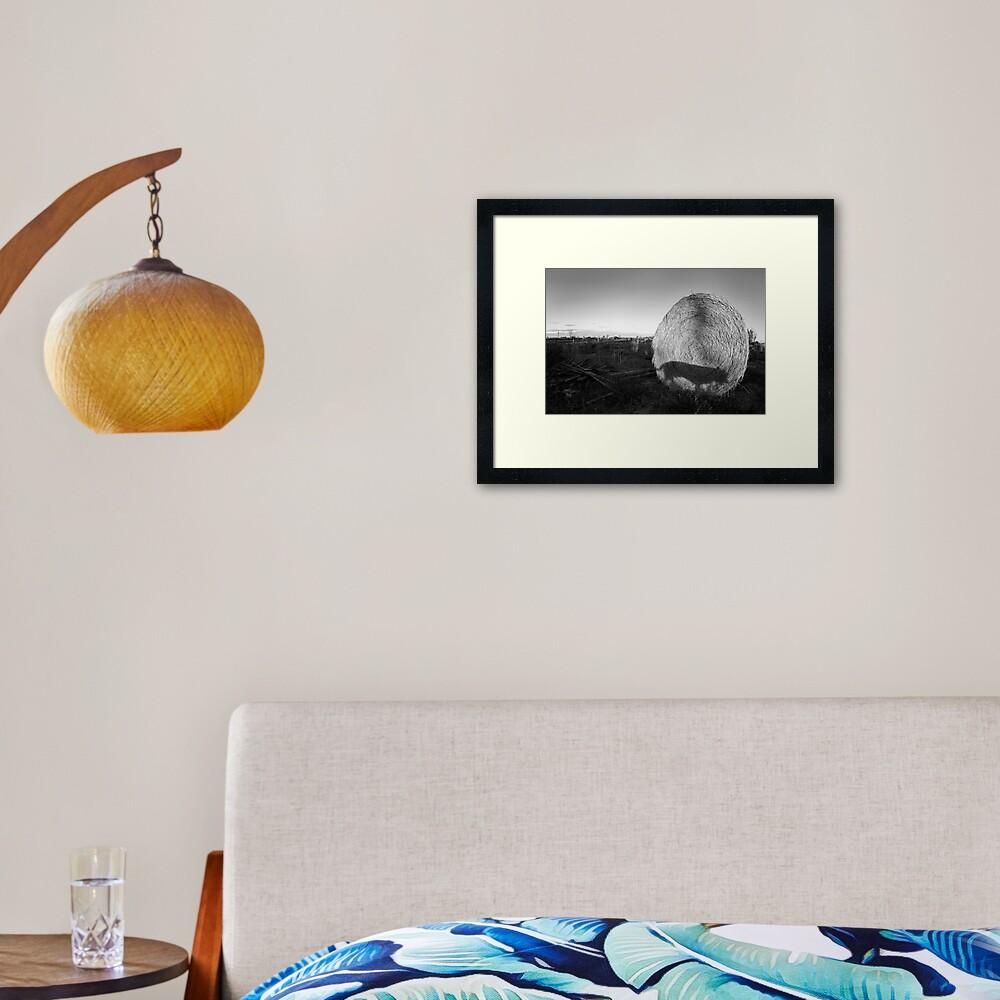 Straw Shadow Framed Art Print